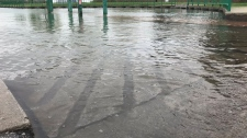 Flooding at Gil Maure Park