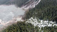 Aerial view shows aftermath of rock slides