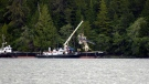 A damaged floatplane is hauled from the water in Alaska on Wednesday, May 15, 2019.