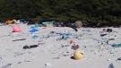 Million pieces of plastic washing up on island