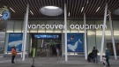 The outside of the Vancouver Aquarium is pictured in Vancouver, B.C. Friday, Nov. 18, 2016. THE CANADIAN PRESS/Jonathan Hayward