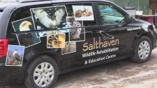 Salthaven Wildlife and Rehabilitation Centre