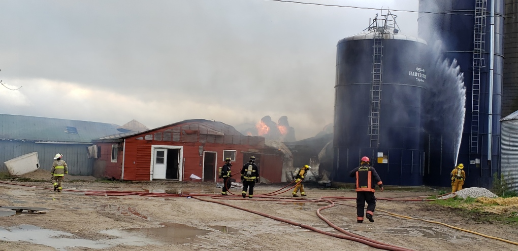 Roughly 50 cattle unaccounted for in barn fire