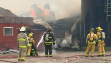 Around 50 cattle saved after barn fire