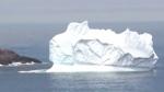 Cape Bonavista, N.L. an iceberg haven