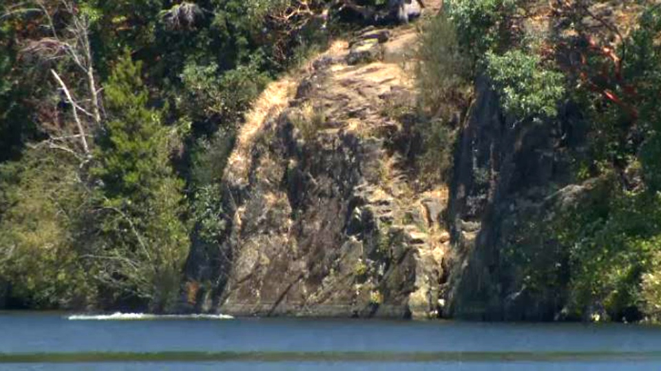 Cliff face at Thetis Lake View Royal