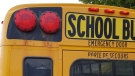 Police say a school bus was stopped for speeding in a school crossing zone. (Source: WRPS)