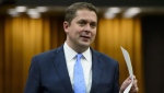 Conservative Leader Andrew Scheer stands during question period in the House of Commons on Parliament Hill in Ottawa on Wednesday, May 8, 2019. Conservative Leader Andrew Scheer is digging into his party's policy bag and vowing to resurrect a Harper-era strategy as part of a wider plan to combat human trafficking. (THE CANADIAN PRESS / Sean Kilpatrick)