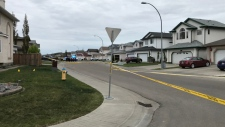 Edmonton police are investigating a weapons complaint in the area of 168 Avenue and 76 Street.