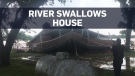 Caught on cam: Overflowing river swallows home