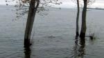 Sunnyside flooding
