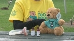 Teddy Bear's Picnic coming up on Sunday