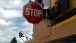 Another near miss involving a student prompts drivers, parents to enforce rules around school buses.