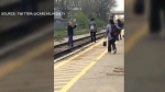 Principal allegedly crosses train tracks for photo
