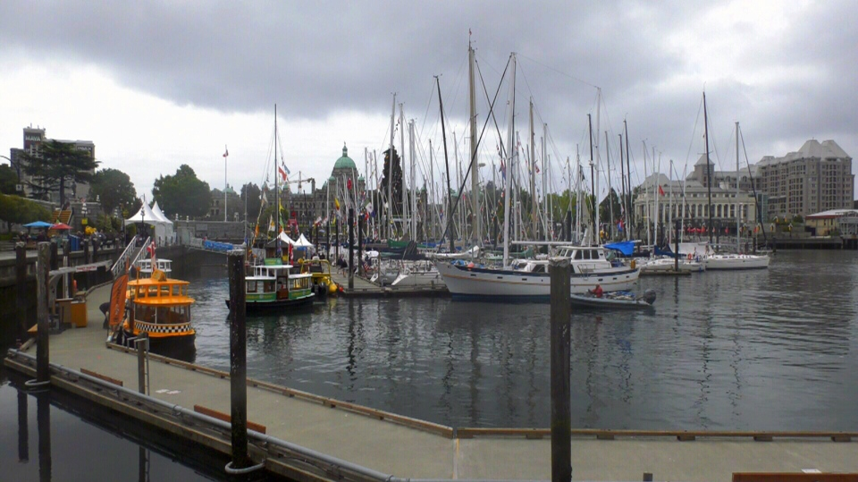 Yachts begin filling up Victoria's Inner Harbour in preparation for the Swiftsure Yacht Race. May 24, 2019. (CTV Vancouver Island)