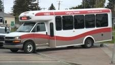 calgary calgary transit bus stolen westbrook mall