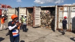 Canadian trash fill these shipping containers in the Philippines.