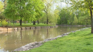 Part of Victoria Park Lake is seen in this photo taken on May 25,  2019 (CTV Kitchener)