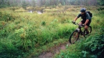 In this Aug. 26, 1999 file photo, a rider peddles his mountain bike through the White Mountain National Forest in Bartlett, N.H. (AP Photo/Jim Cole, File)