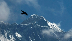 A bird flies as Mount Everest is seen from Namche Bajar, Solukhumbu district, Nepal, Monday, May 27, 2019. (AP Photo/Niranjan Shrestha)