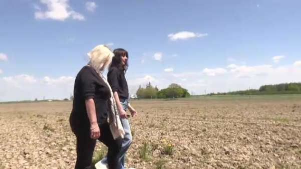 The owners of 48North walk the 100-acre legal cannabis farm they started in southern Ontario.