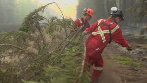 Alberta wildfire firefighters