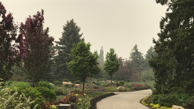 calgary zoo wildfire smoke