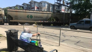 Waiting for the train to cross may be a thing of the past for Pitt Meadows residents.