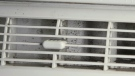 Tiny black spots are seen along the air duct of this air conditioner.