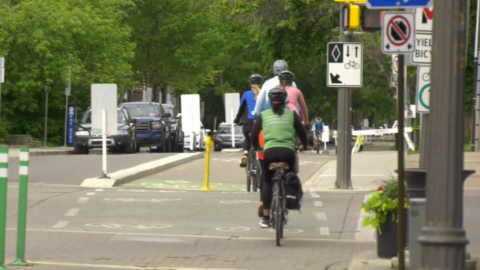 City offers guided tours of bike lanes.