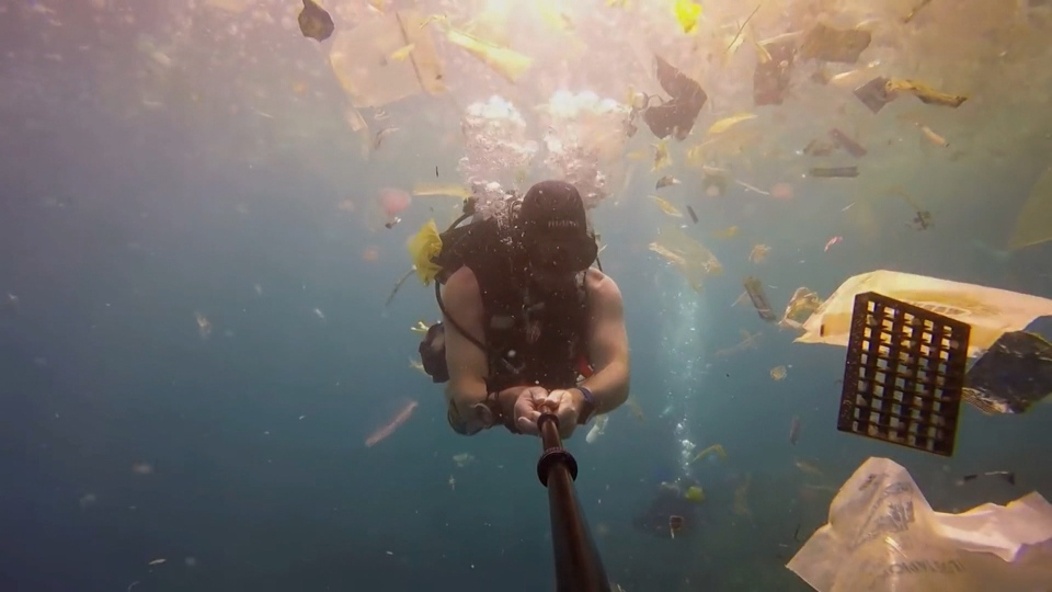 The sea is swimming with plastic waste.