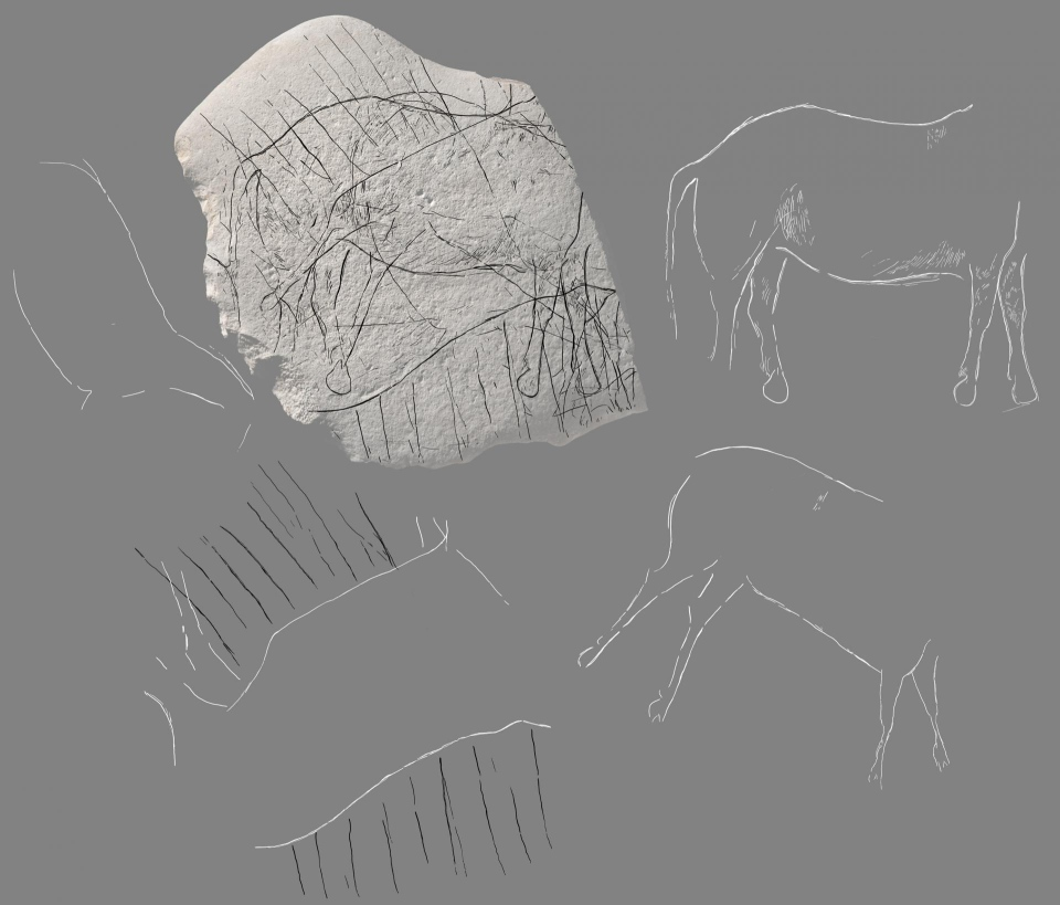 Archeologists in France have uncovered a stone plate believed to be 12,000 years old containing engravings of what appears to be a horse and other animals.