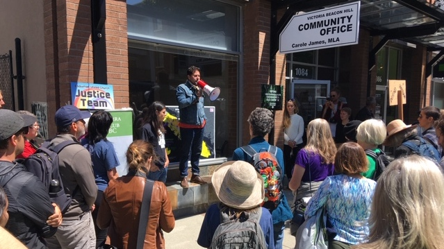 Old-growth logging opponents stage protests across B.C.