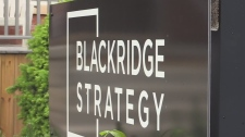 Blackridge Strategy work under the microscope