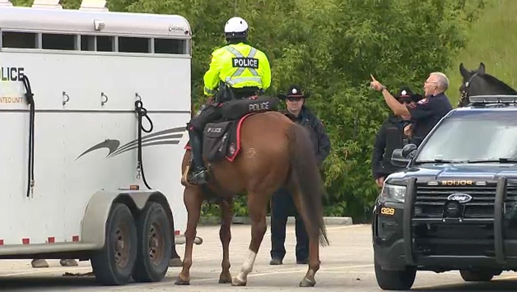 calgary calgary police carter bothner missing
