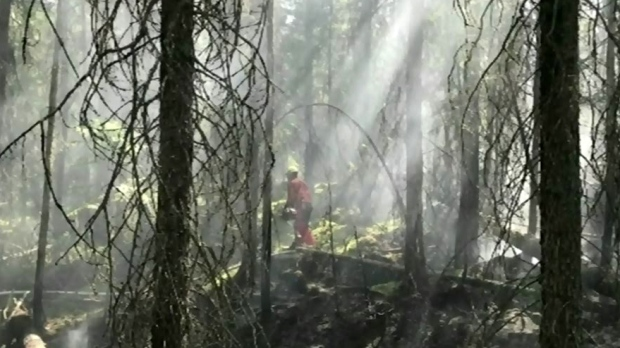 Gogama fire gets help from Mother Nature
