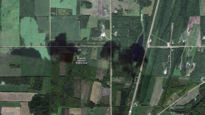 The Meanook National Wildlife Area is seen in this satellite image. (Google News)