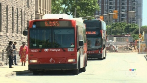 OC Transpo buses
