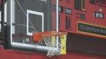 Just how much do basketball fans understand?
