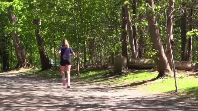 The executive director of the Blue Nose Marathon says it all started when the runner came across a dog on the portion of the course through Point Pleasant Park.