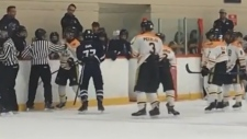 Junior hockey brawl