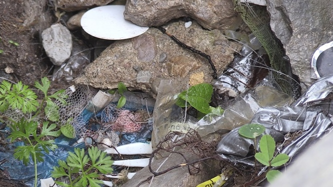 Plastic can be seen along the shore of Georgian Bay on Thurs., June 13, 2019 (CTV News/Roger Klein)