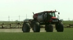 Dry conditions have crops off to a slow start