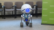 Buckle bot helps young passengers buckle up
