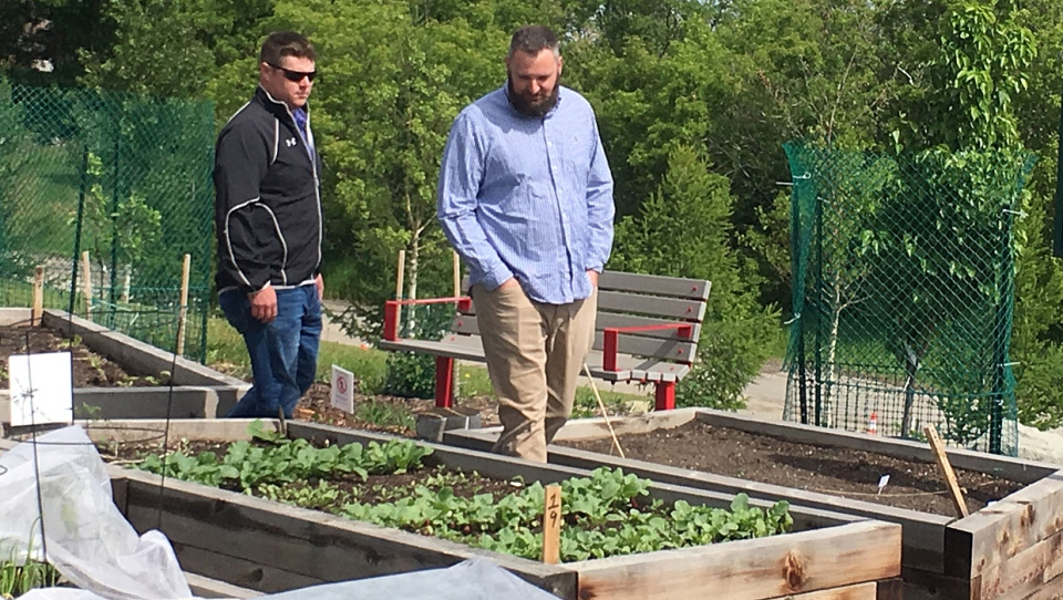 Cultivatr founder Daniel Berezan and rancher Lorin Doerksen check out the crops at Renfew Community Garden.
