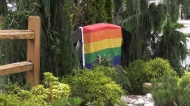 Pride flag removed from Aldergrove home