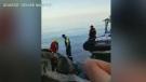 4 men in hospital after jetski runs onto shore