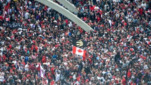 Fans gather for Raptors rally