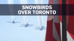 Snowbirds soar for NBA champs Toronto Raptors