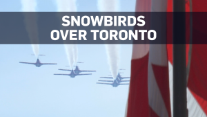 Snowbirds soar for NBA champs Toronto Raptors